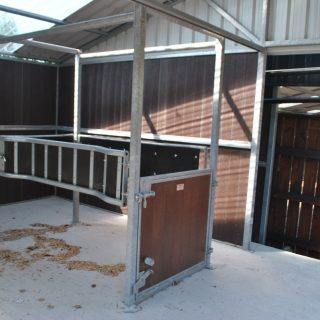 Allenweld Horse Stock