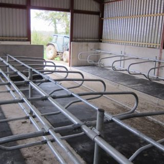 Agricultural Cattle Cubicles